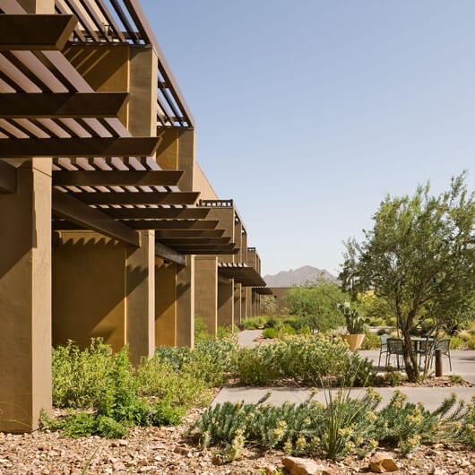 StudioConover - Architectural Design | 04 UMC Cancer Center
