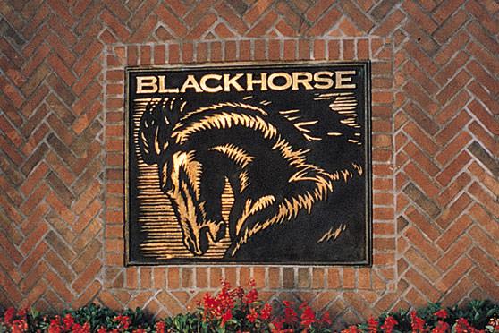 StudioConover - Brand Identity   Blackhorse Logo