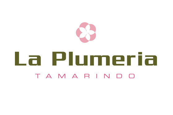 StudioConover - Brand Identity   La Plumeria Logo